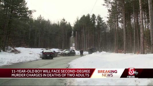 11-year-old boy facing 2 counts of 2nd-degree murder in double NH shooting