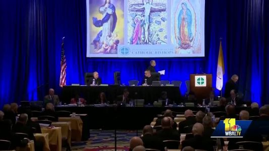 Several bishops support taking action against sex abuse despite Vatican-imposed delay