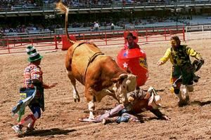Cheyenne Frontier Days canceled for 1st time in 124 years