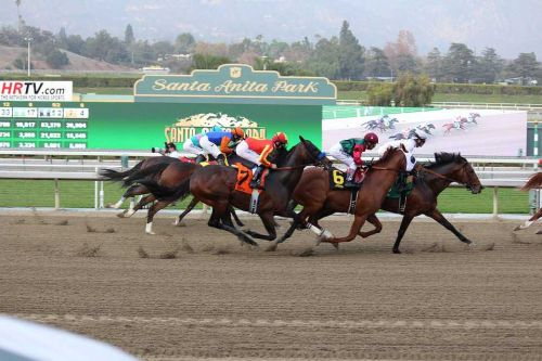 Another horse dies at California racetrack; 24th horse to die in less than 6 months