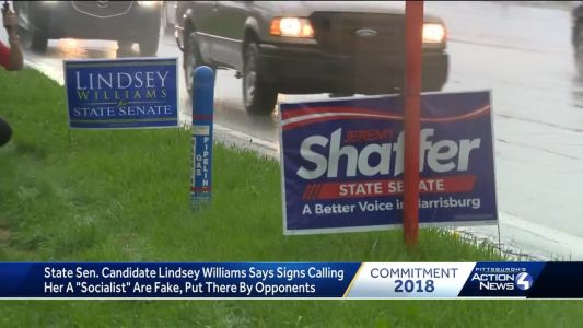 Fake 'socialist' campaign signs for Pa. Senate candidate Lindsey Williams placed in local communities