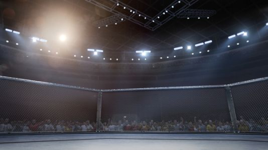 In 'Why We Fight,' One Man Searches For Self-Knowledge Through Mixed Martial Arts