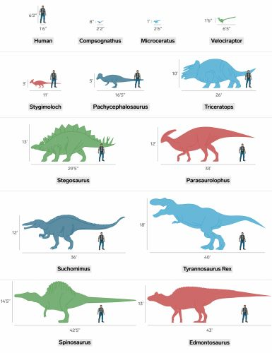 This is how big the dinosaurs in Jurassic World 2 are compared to humans