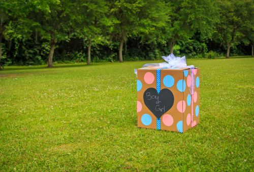 Gender reveal party explosion rattles several New Hampshire towns