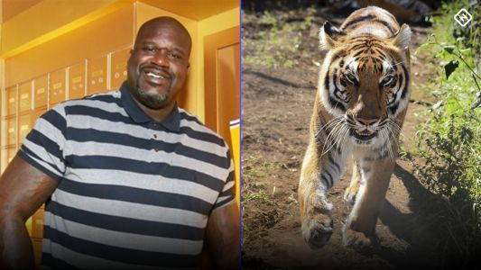 Shaq explains his 'Tiger King' cameo: 'I had no idea any of that stuff was going on'