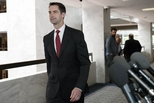 Cotton says New York Times 'stood up to the woke progressive mob' by running controversial op-ed