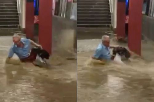 State AG probing subway flood that swept man off his feet