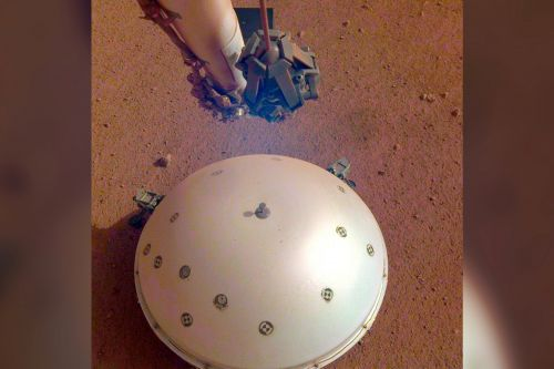 NASA's Mars lander might have detected its first 'marsquake'