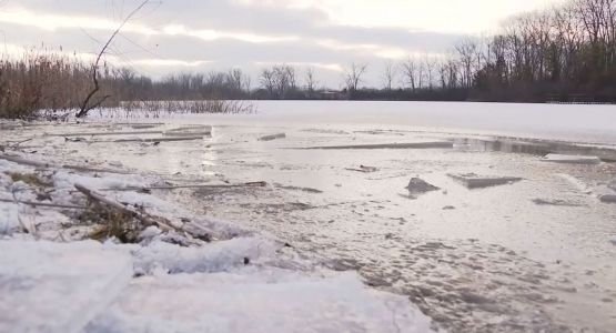 Investigators: Woman drowned in icy pond while trying to rescue her dog