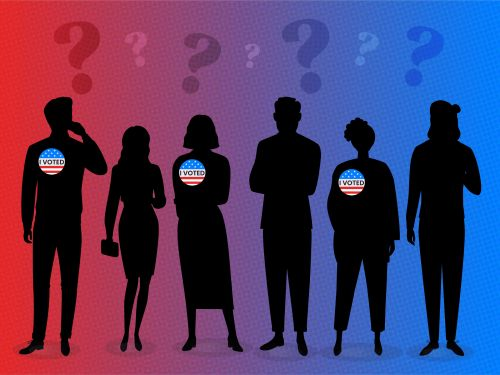 Who the hell are the non-voters at a time like this? An Insider investigation