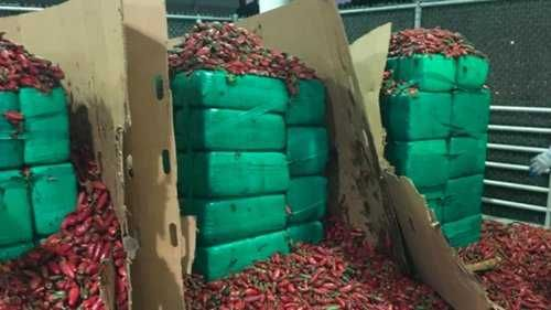 Nearly 4 tons of marijuana discovered inside shipment of jalapeños