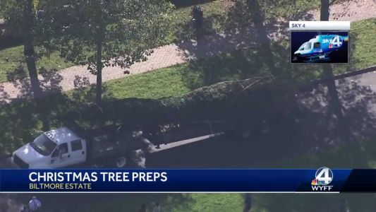 Sky 4: Excitement builds as Christmas tree arrives at Biltmore Estate