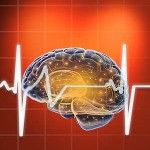 Cardio Exercise Tied to Brain Health Via Increased Gray Matter