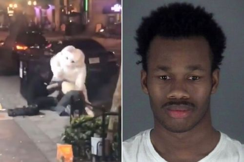 Suspect in Florida 'bunny' beatdown is wanted for burglary