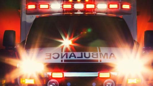 Greenville woman dies after receiving 'extremely severe' dog bites, coroner says