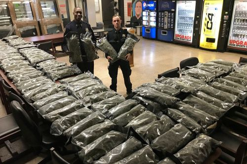 NYPD drops case against hemp dealer - but may keep his haul