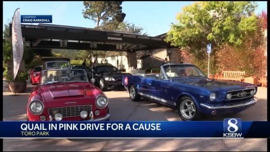 Classic cars out for a spin fundraising for Breast Cancer