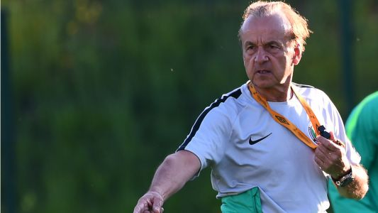 'The NFF is solidly behind Rohr' - Akinwunmi rubbishes query claims