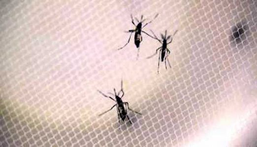 West Nile death confirmed in Jefferson County