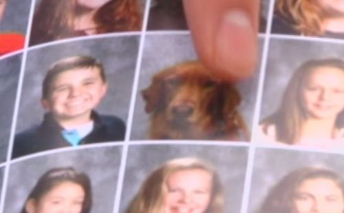 Service dog loved by students included in New York middle school yearbook