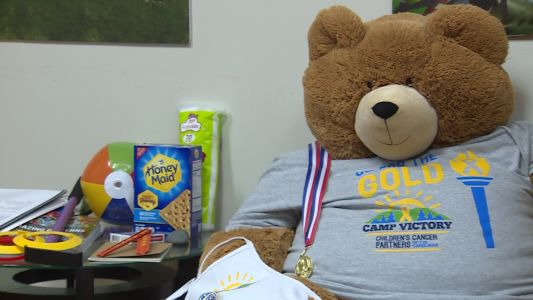 Virtual summer camp held for child cancer patients