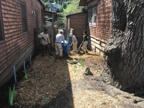 AmeriCorps partners with local organizations for San Lorenzo Valley stewardship