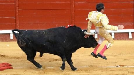 'Mess with the bull, you get the horns': Bullfighter Enrique Ponce gored in the BUTTOCKS before killing bull