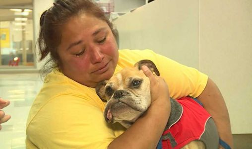 VIDEO: Woman reunited with dog she was forced to give up 10 years ago
