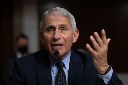 Dr. Fauci says US 'not in a good place' with over 205,000 coronavirus deaths