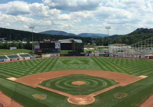 With no path forward amid COVID-19 pandemic, Minor League Baseball cancels 2020 season
