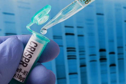 The first gene-edited babies: The legal and ethical questions
