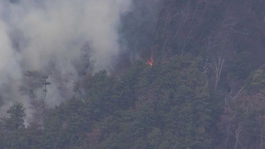 Orange flames, white smoke spotted at North Carolina's famed Cold Mountain, Forest Service says