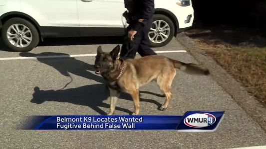 Belmont K-9 finds suspect behind fake wall