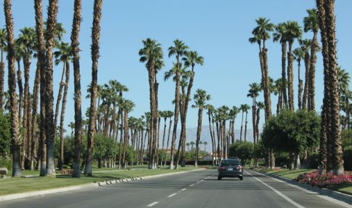 Belski's Blog - Third rainiest day ever for Palm Springs, CA