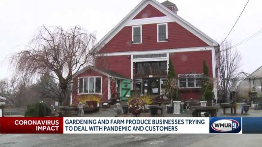 Pandemic, economy mean uncertain times for garden centers