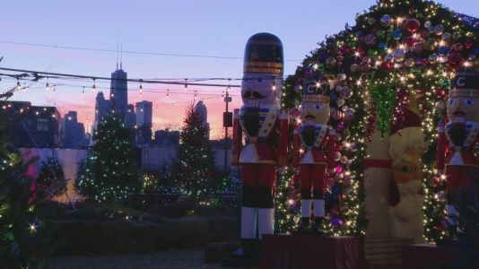 Christmas tree farm brings a winter wonderland to Chicago