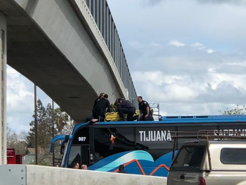 Quick thinking, Greyhound bus save man's life at Elk Grove overpass