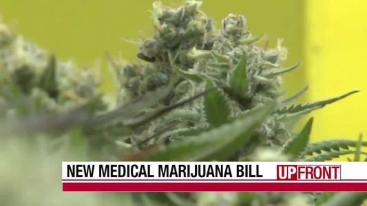Medical marijuana shot down again