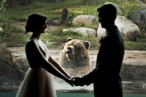 This couple's wedding photos are unbearably cute