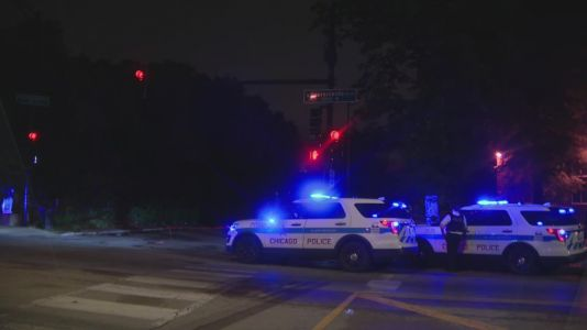 Man killed in hit-and-run on West Side Friday morning