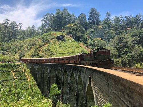 I took a $3, 7-hour train ride through Sri Lanka's hill country - and it was unlike any travel experience I've ever had
