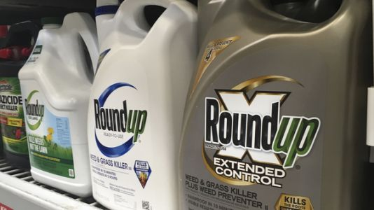 California Jury Finds Roundup Caused Man's Cancer