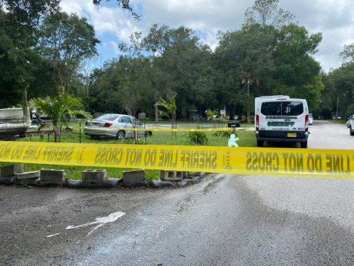 Sheriff: Florida homeowner kills armed intruders; their accomplice now faces murder charges