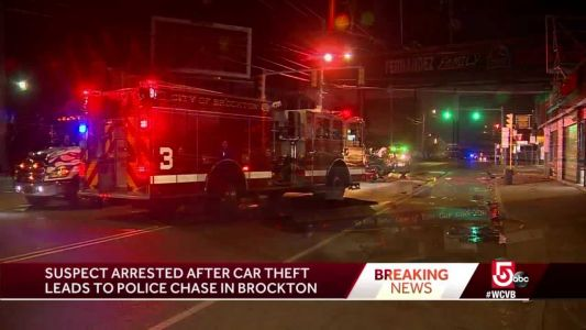 Suspect arrested after car theft leads to police chase
