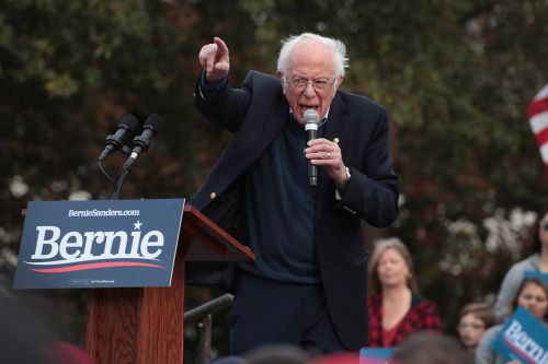 Sanders barnstorms Super Tuesday states in pursuit of knockout blow