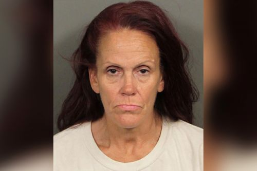 Coachella woman suspected of dumping puppies had 38 dogs in home