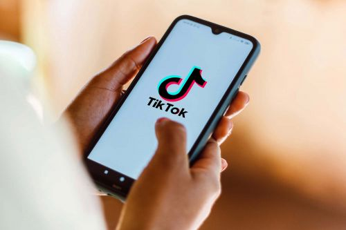 Federal judge halts Trump administration ban on TikTok downloads