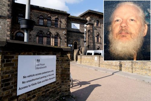 Julian Assange being held in UK's most overcrowded prison