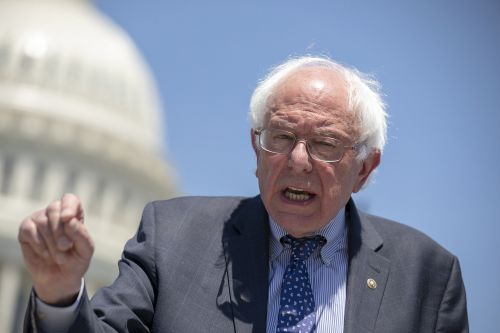 Bernie's bid to privatize socialism and other comments