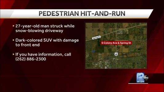 Man hit by vehicle while snow-blowing driveway